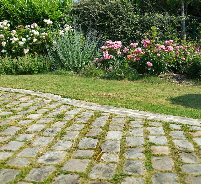 Allées et Terrasses - Arboriste Paysagiste JEV Chevreuse