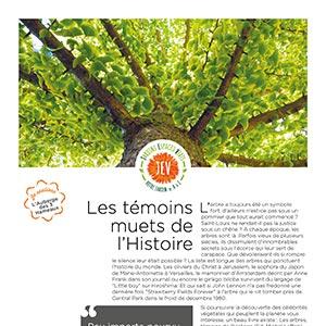 magazine-Ma-Vallee-elagage-arboriste-paysagiste-JEV